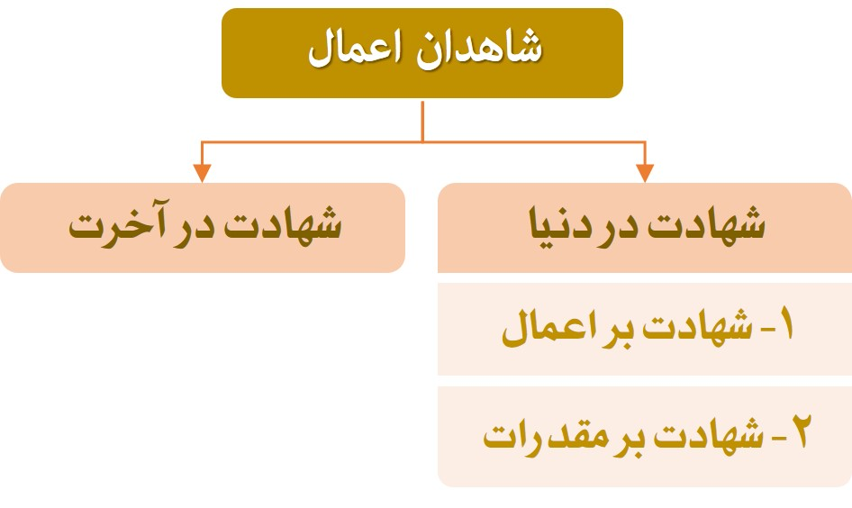 نمودار شاهدان اعمال